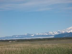 Magnificent Bering Glacier